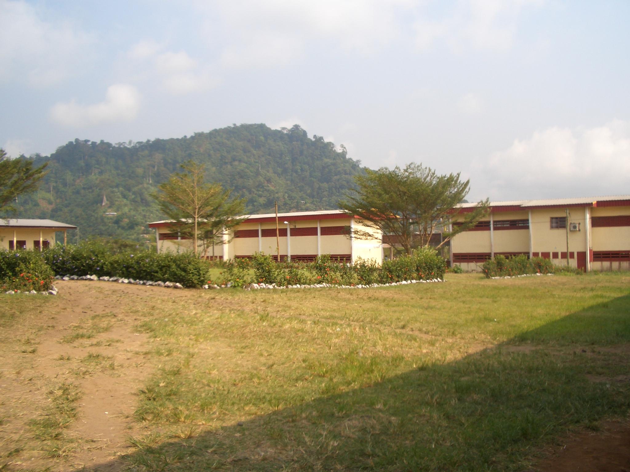 openafrica-cameroon7